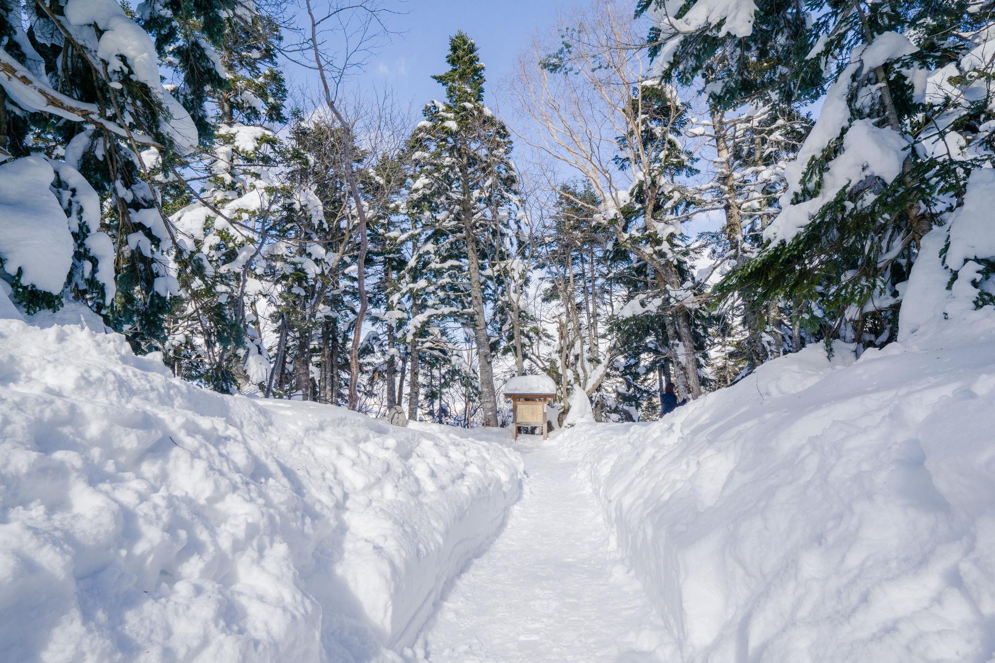 【岐阜】超級推薦!奧飛驒溫泉鄉的冬季戀歌 ~ 新穗高纜車雪景攻略 118