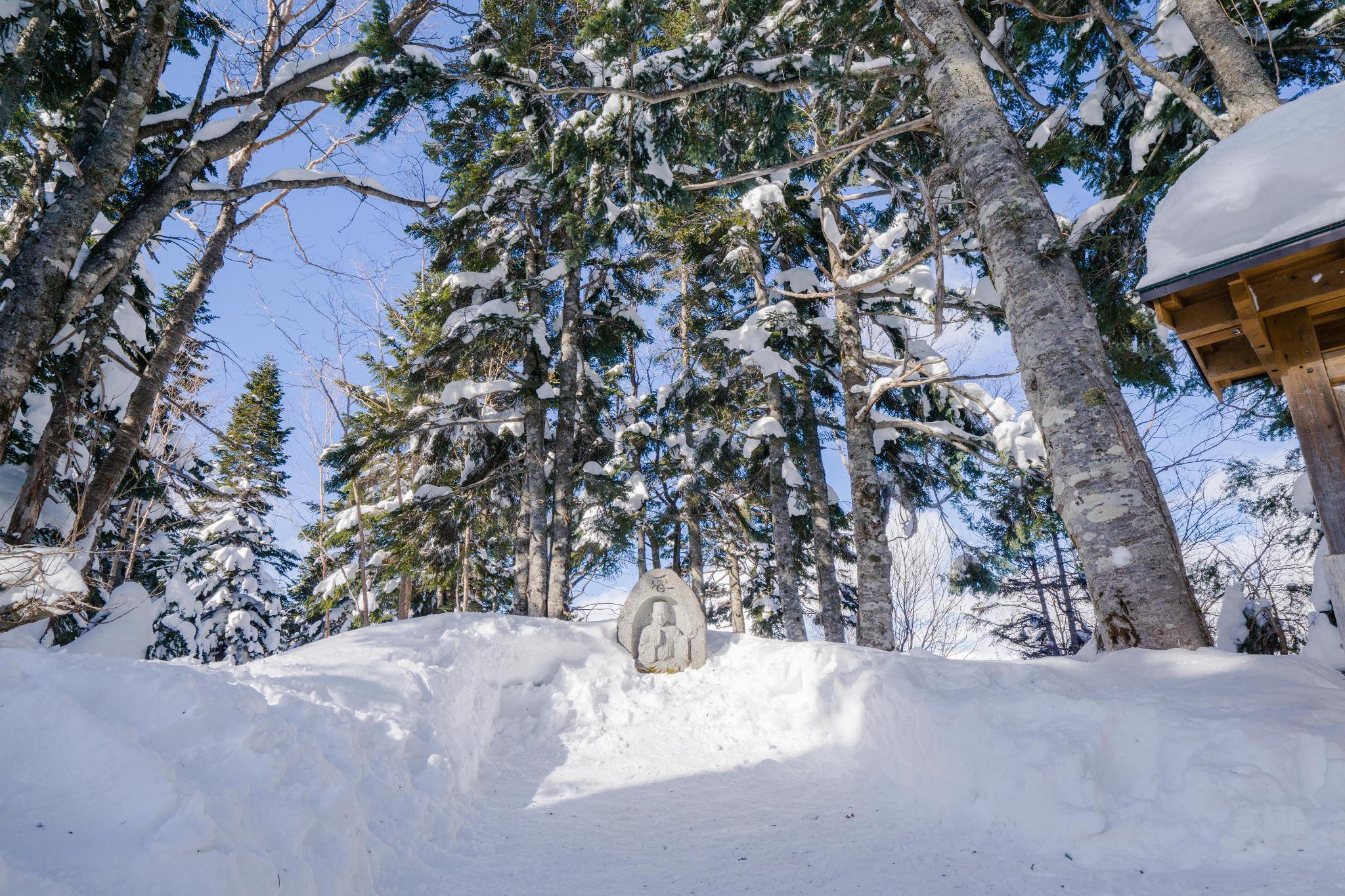 【岐阜】超級推薦!奧飛驒溫泉鄉的冬季戀歌 ~ 新穗高纜車雪景攻略 119