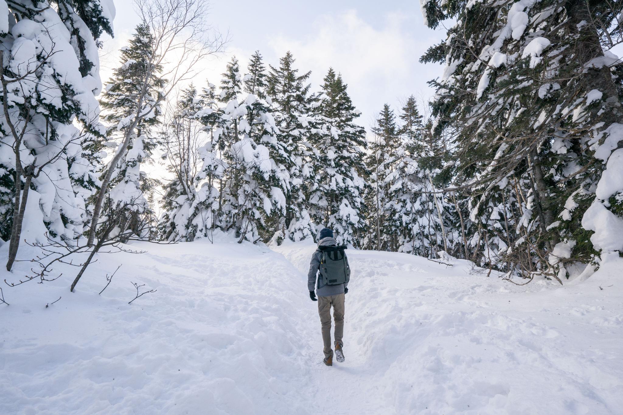 【岐阜】超級推薦!奧飛驒溫泉鄉的冬季戀歌 ~ 新穗高纜車雪景攻略 121