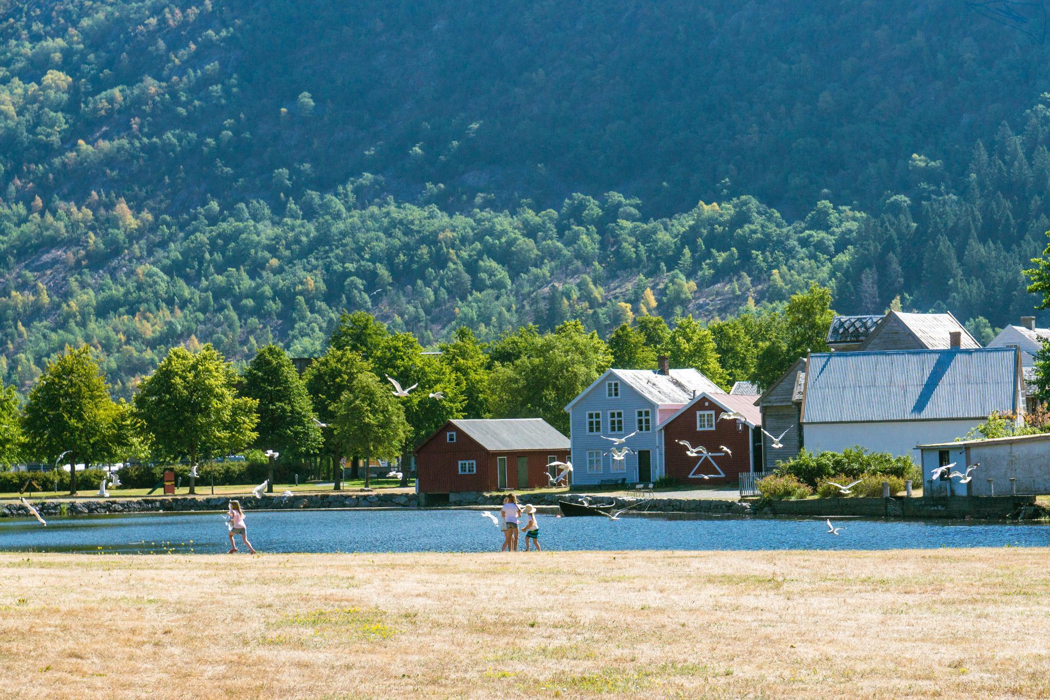 【北歐景點】Lærdalsøyri 世遺松恩峽灣萊達爾小鎮的仲夏風景 34