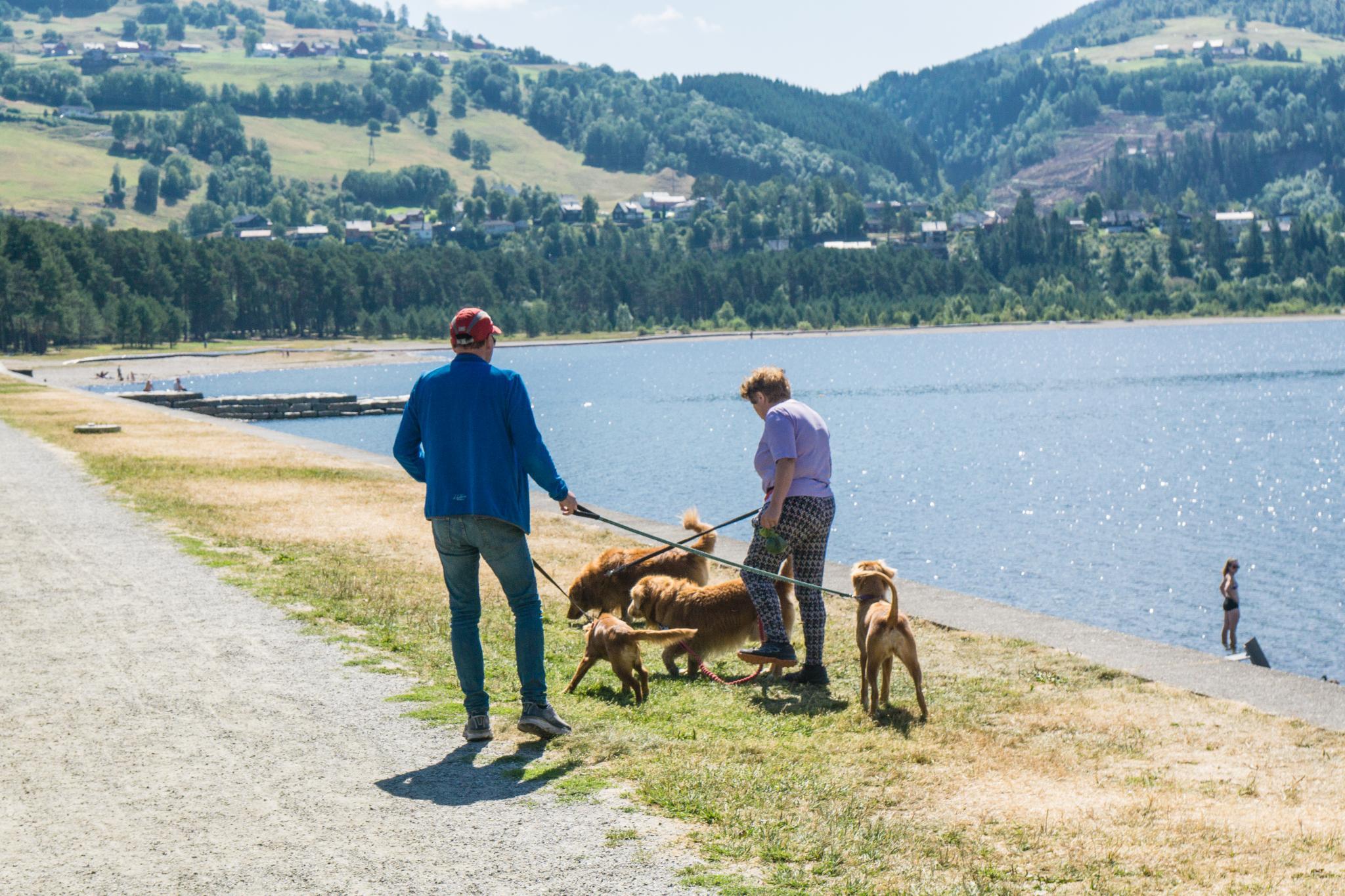 【北歐景點】挪威VOSS小鎮 — 探訪世界最純淨泉水產地 9