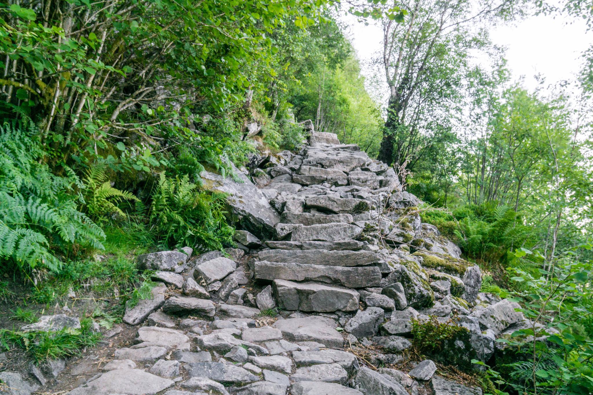 【卑爾根】超級震撼的隱藏版挪威景點 — Stoltzekleiven桑德維克斯石梯與Fløyen佛洛伊恩觀景台大縱走 7