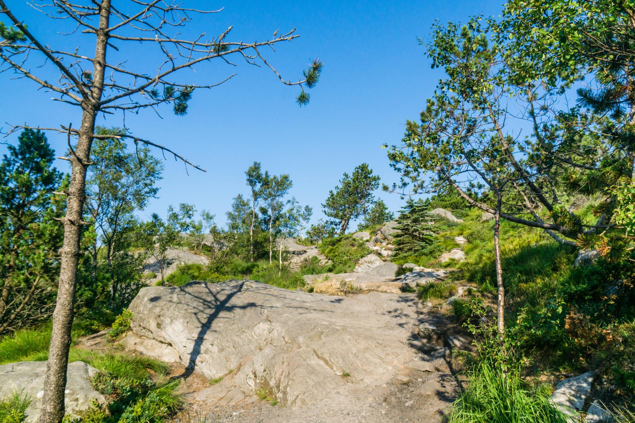 【卑爾根】超級震撼的隱藏版挪威景點 — Stoltzekleiven桑德維克斯石梯與Fløyen佛洛伊恩觀景台大縱走 10