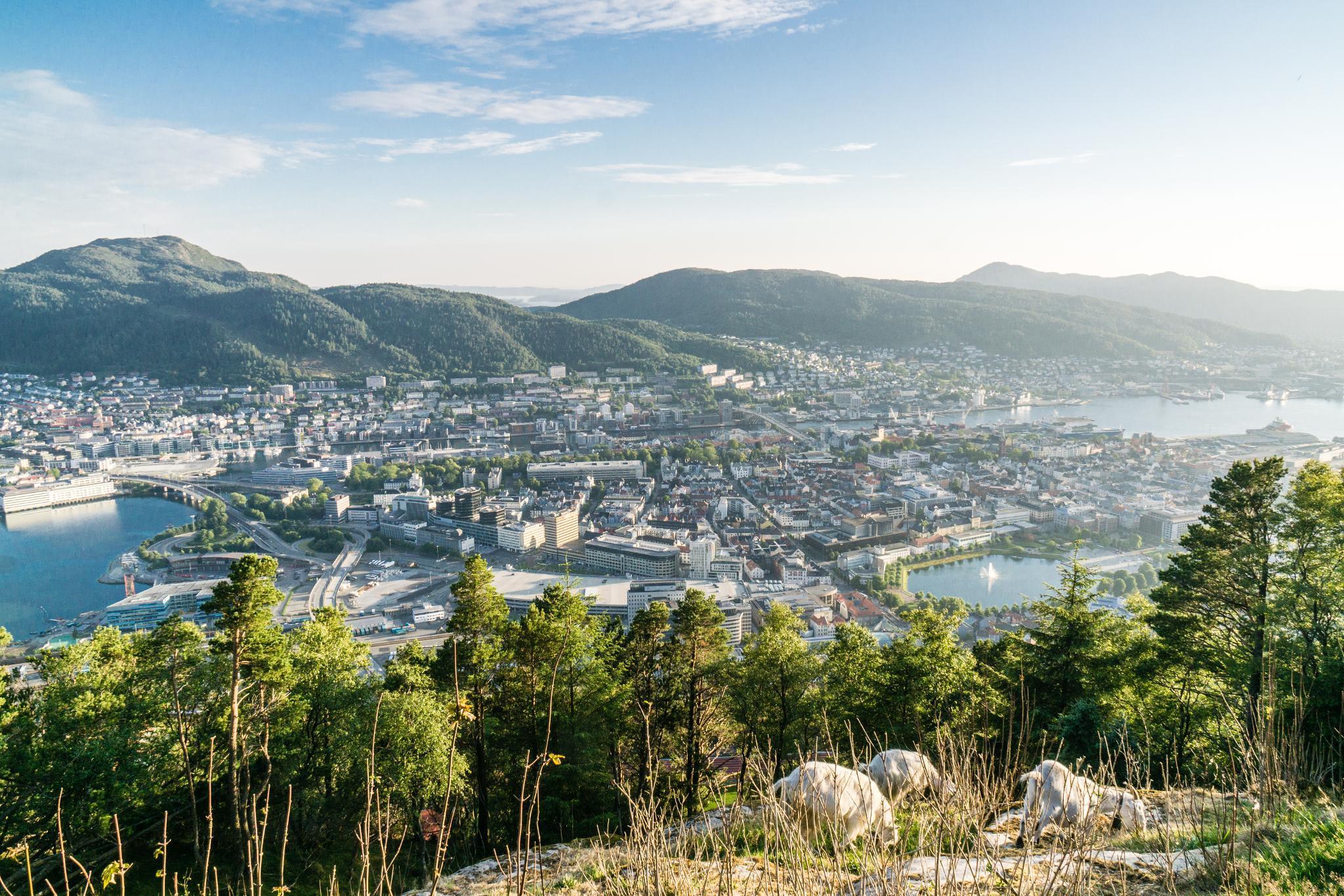 【卑爾根】Fløyen 佛洛伊恩山纜車與觀景台 — 擁抱文化港都的百萬美景 103