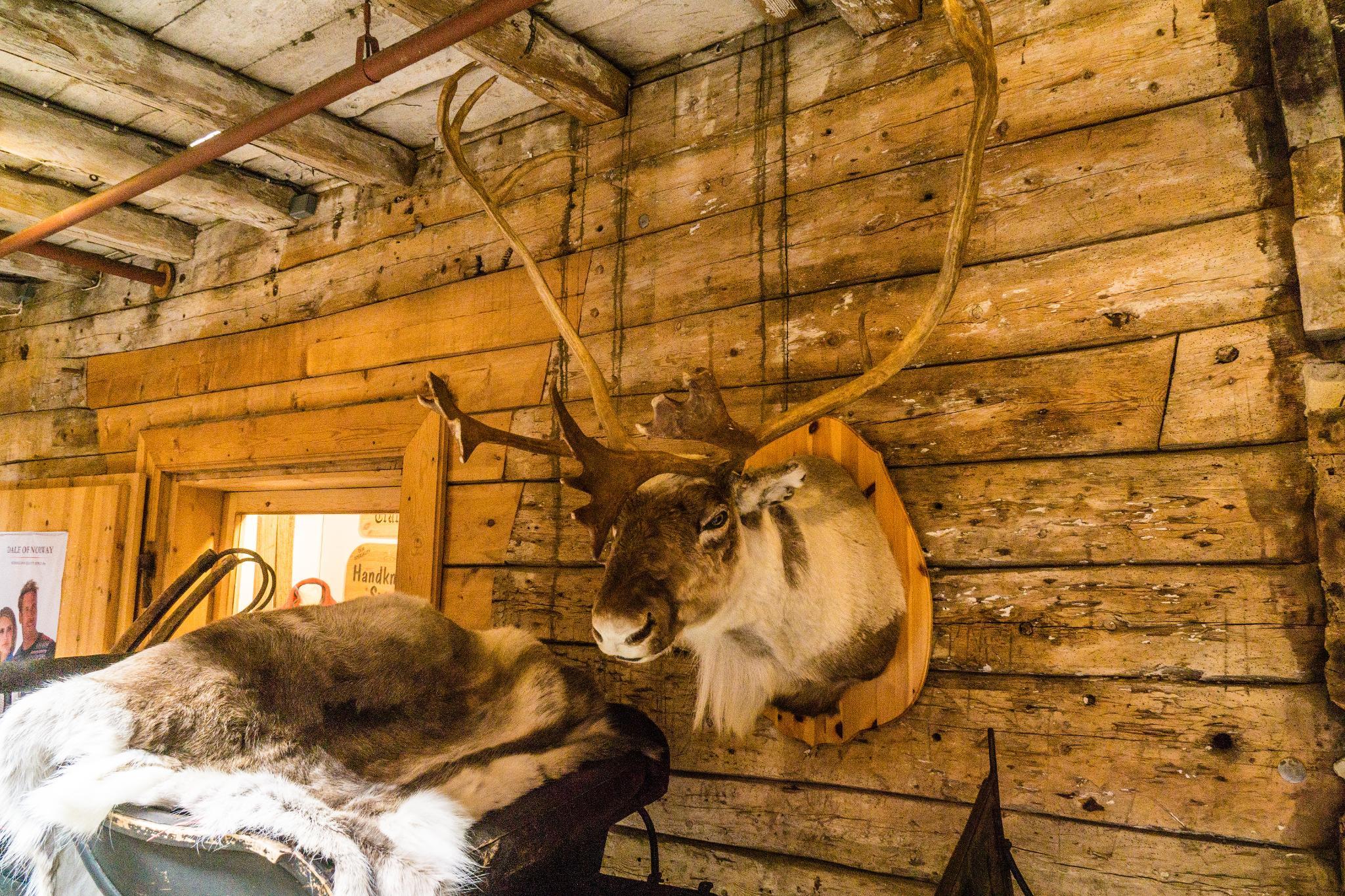 【卑爾根】Bryggen 世界遺產布呂根 — 迷失在百年歷史的挪威彩色木屋 17