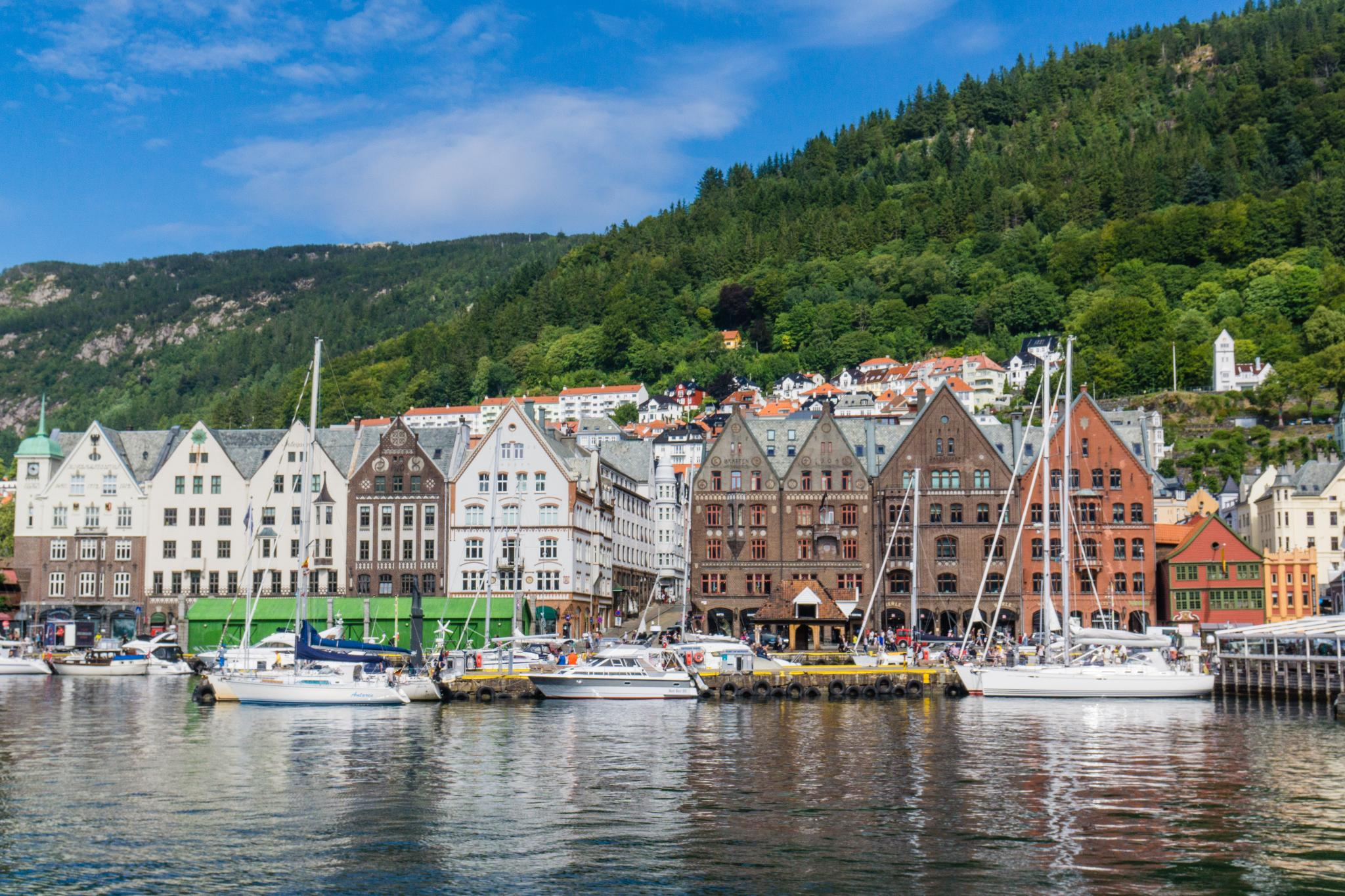 【卑爾根】童話北歐!卑爾根自由行景點全攻略 130