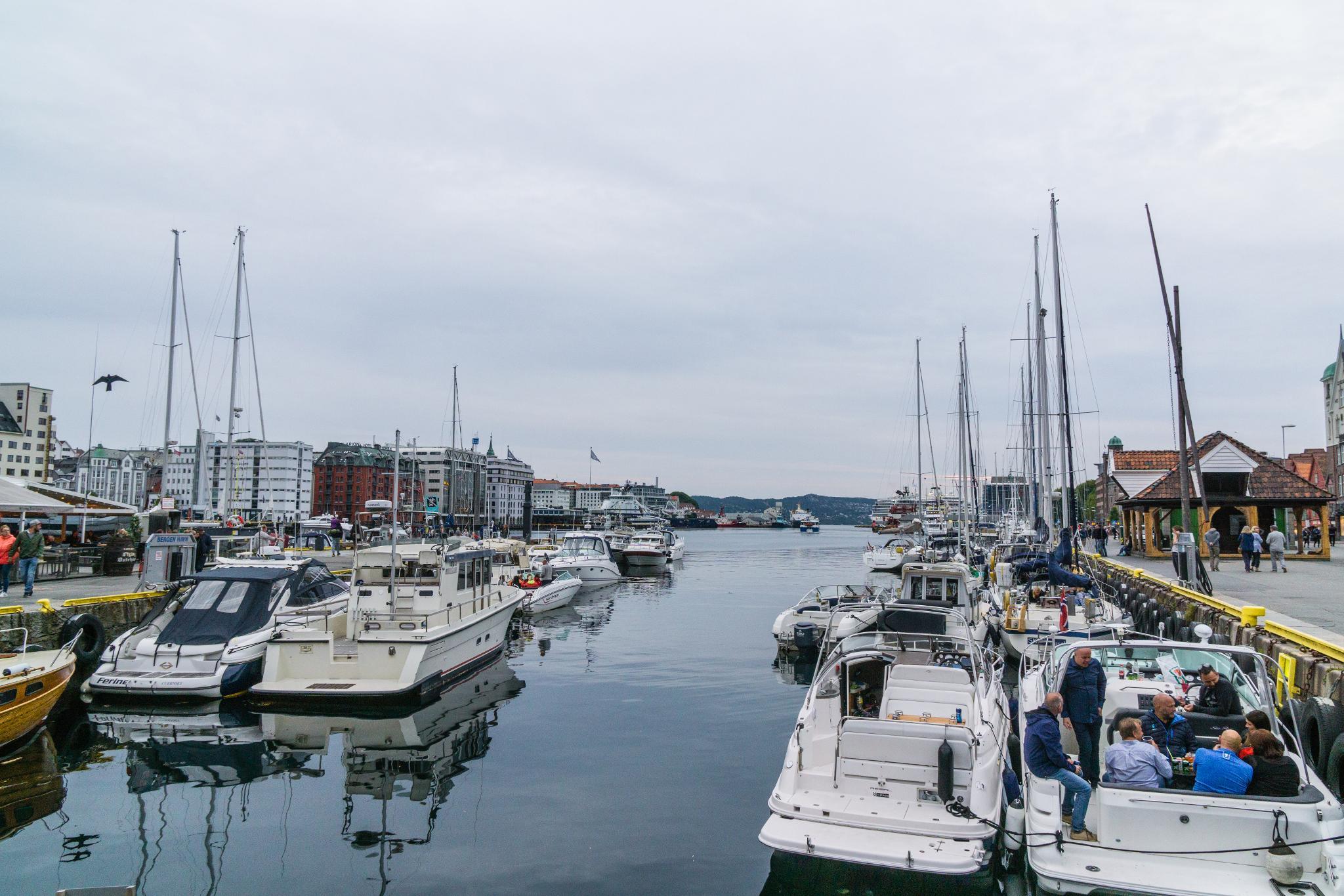 【卑爾根】海鮮吃貨~前進價格不菲的卑爾根魚市場 Fisketorget 56