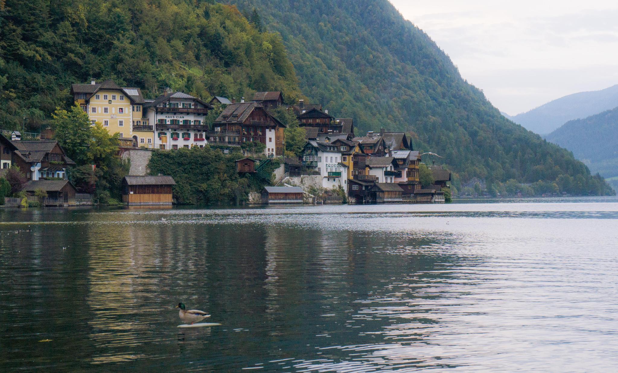 【奧地利】童話仙境 Hallstatt 哈修塔特 — 追逐世界遺產小鎮的夢幻黃金日出 34