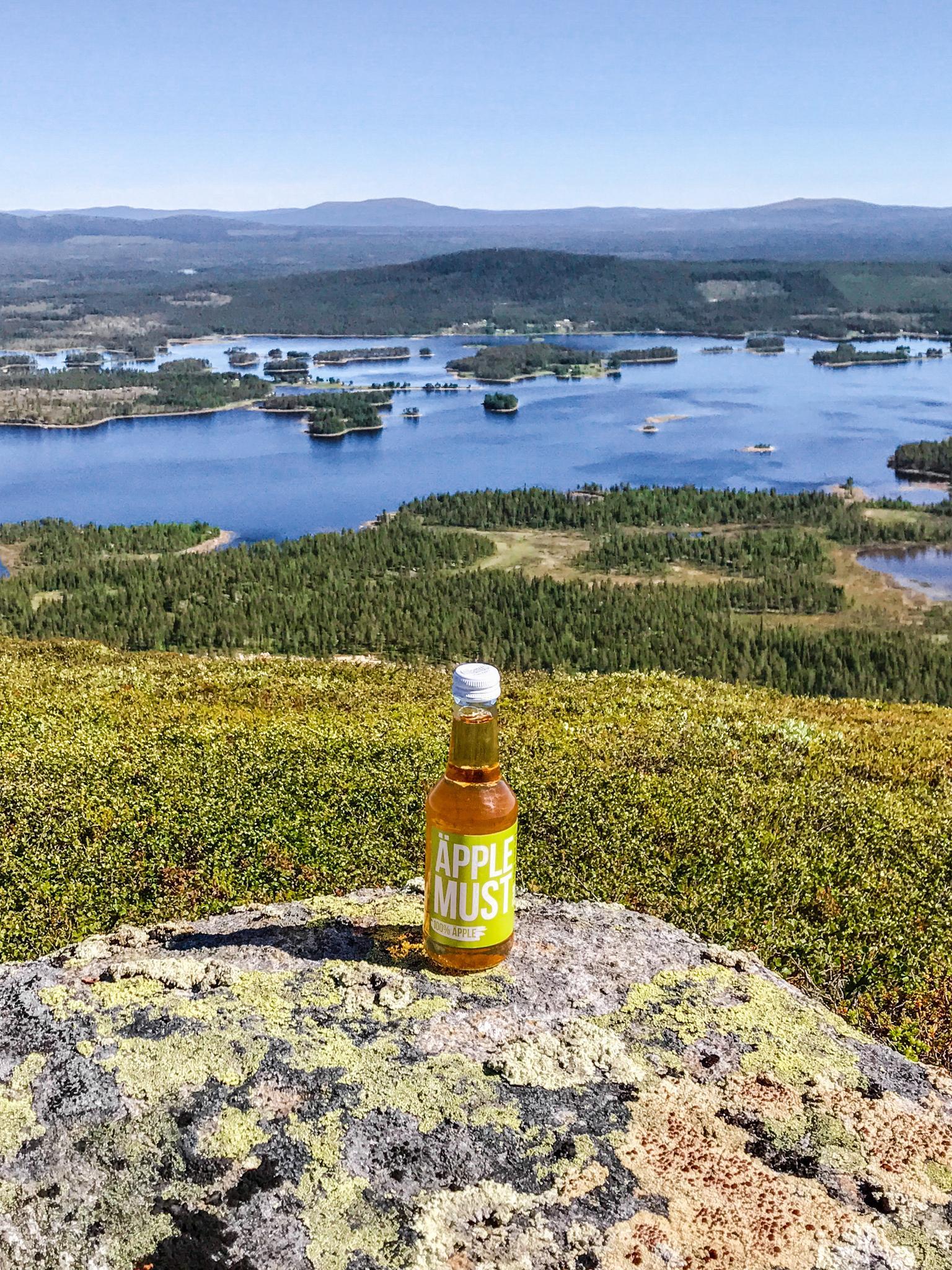 【北歐景點】Arjeplog Galtispuoda:眺望無盡延綿的瑞典極圈荒原 37