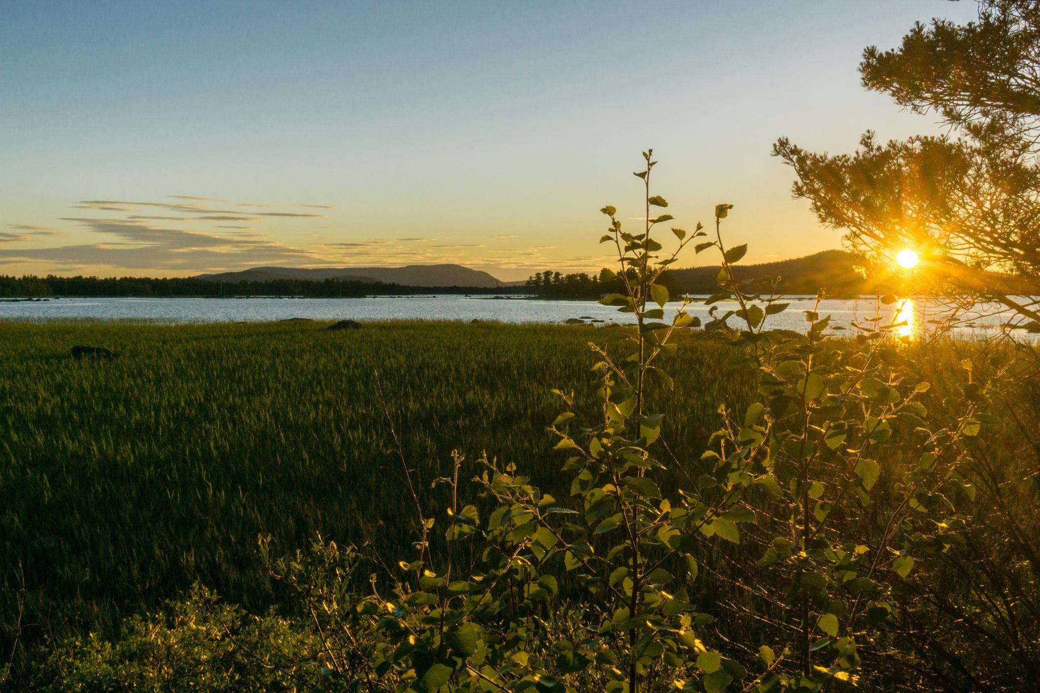 【北歐露營】北極荒野的推薦度假村 — 瑞典阿爾耶普魯格 Kraja 酒店 64