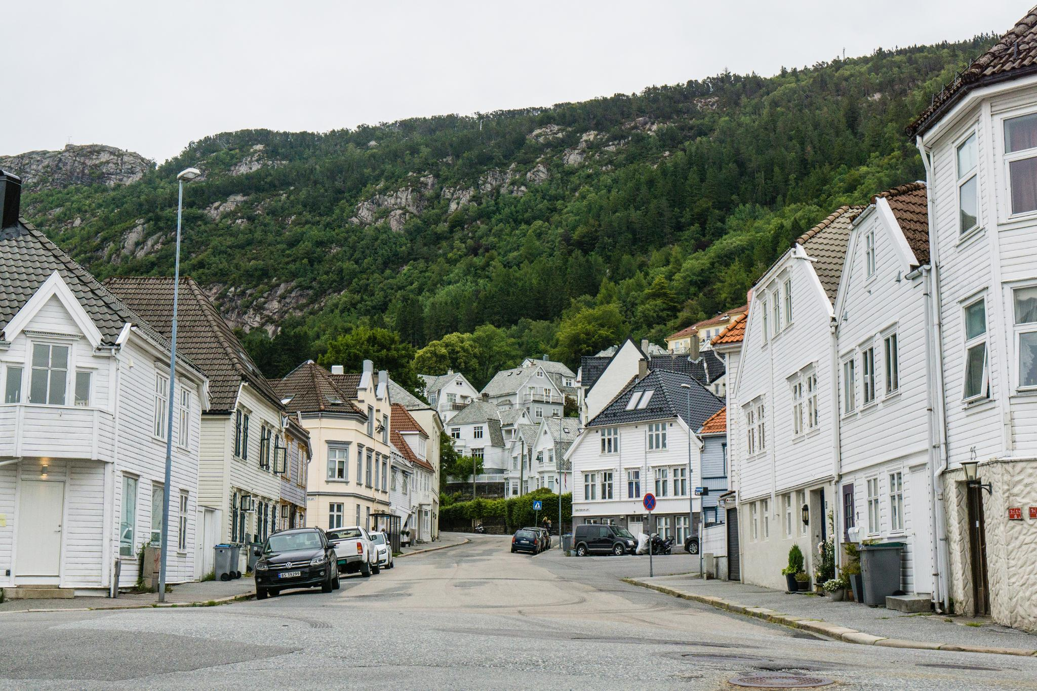 【卑爾根】旅行隨筆:走入卑爾根郊區的尋常百姓家 30