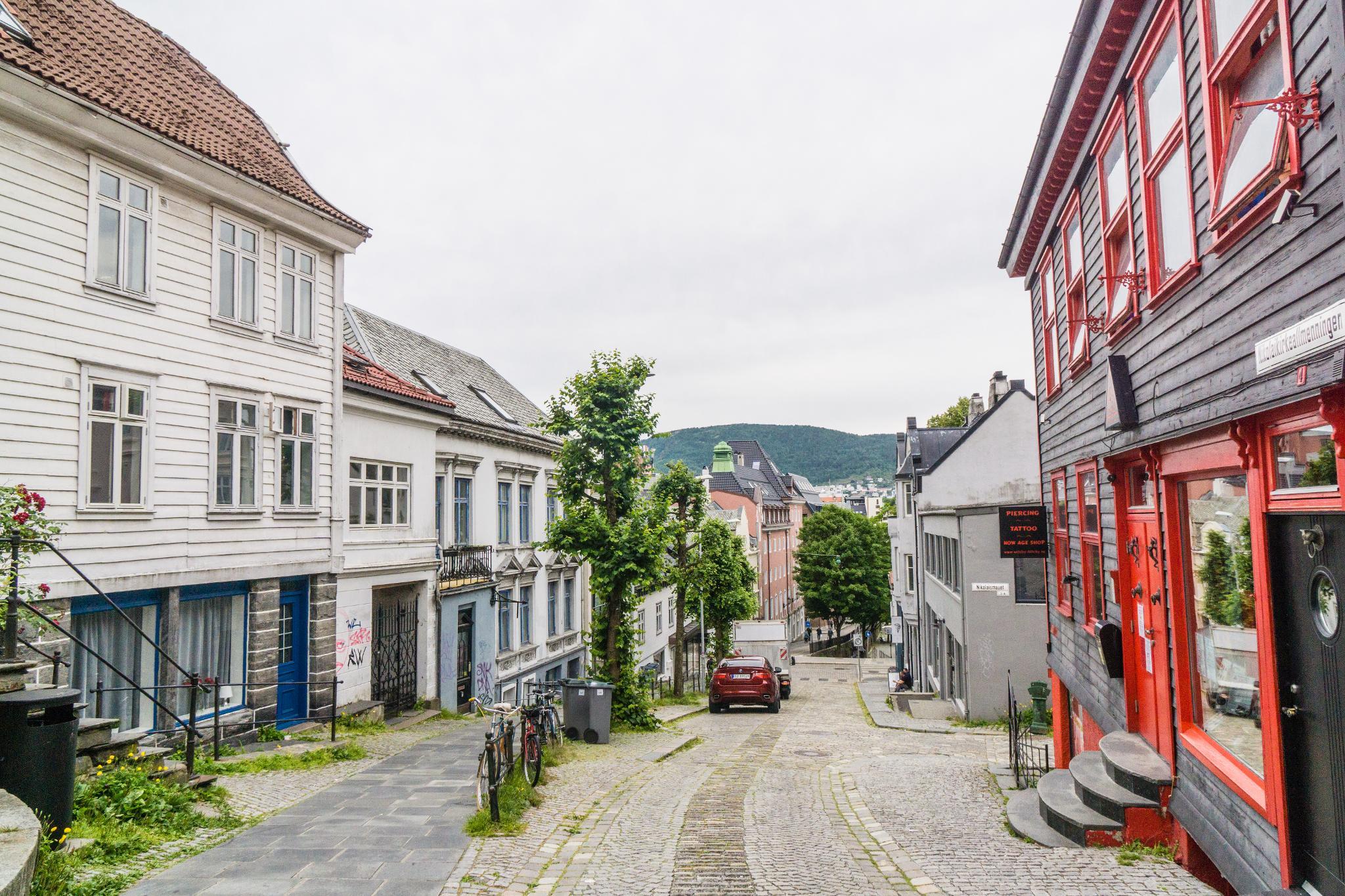 【卑爾根】旅行隨筆:走入卑爾根郊區的尋常百姓家 39