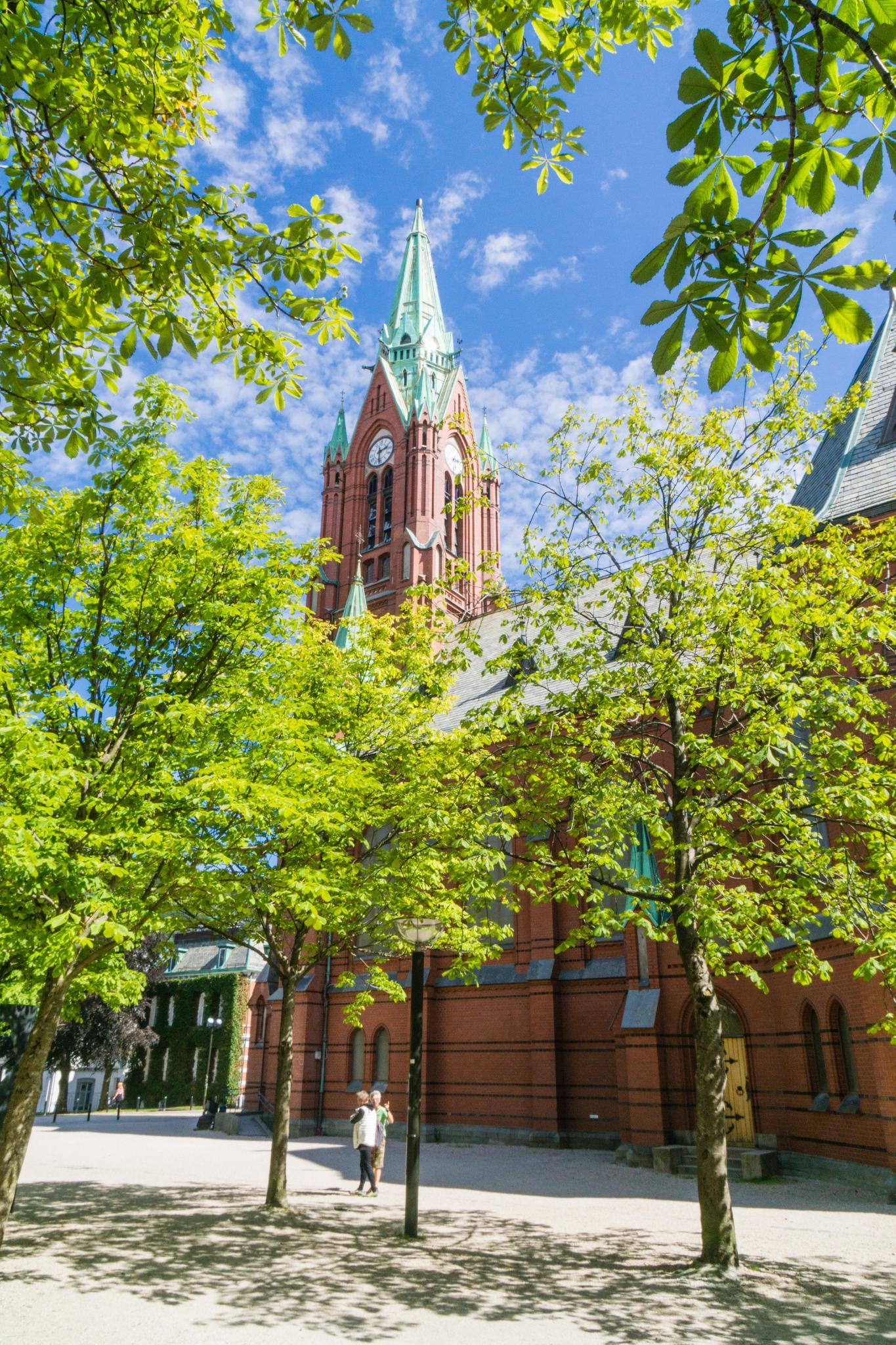 【卑爾根】童話北歐!卑爾根自由行景點全攻略 177