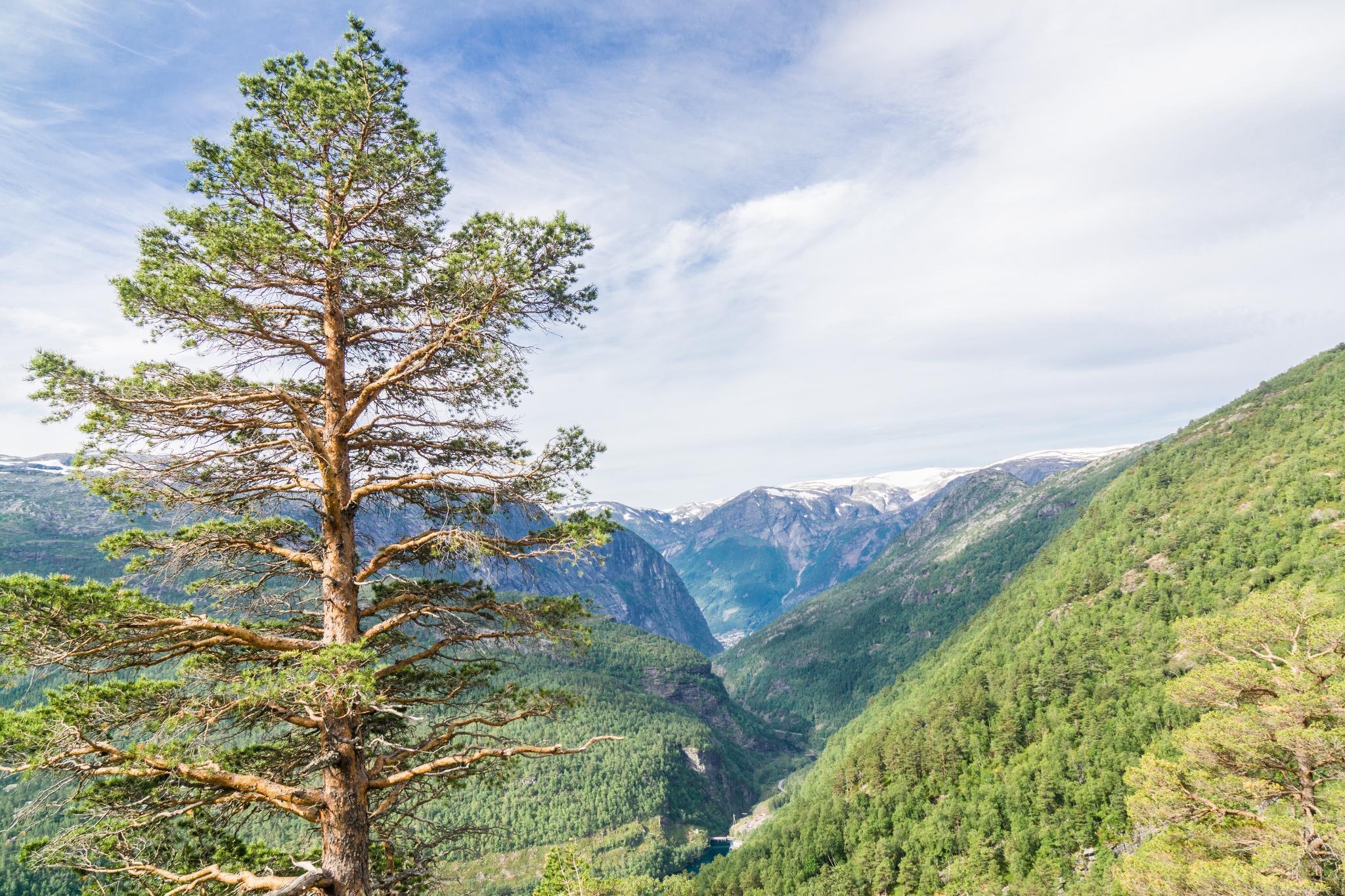 【北歐景點】挪威惡魔之舌 Trolltunga — 28公里健行挑戰全攻略 180